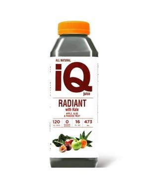 IQ Radiant Kale 16oz